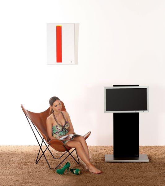 Wissmann Flat Art 135 TV-Halter
